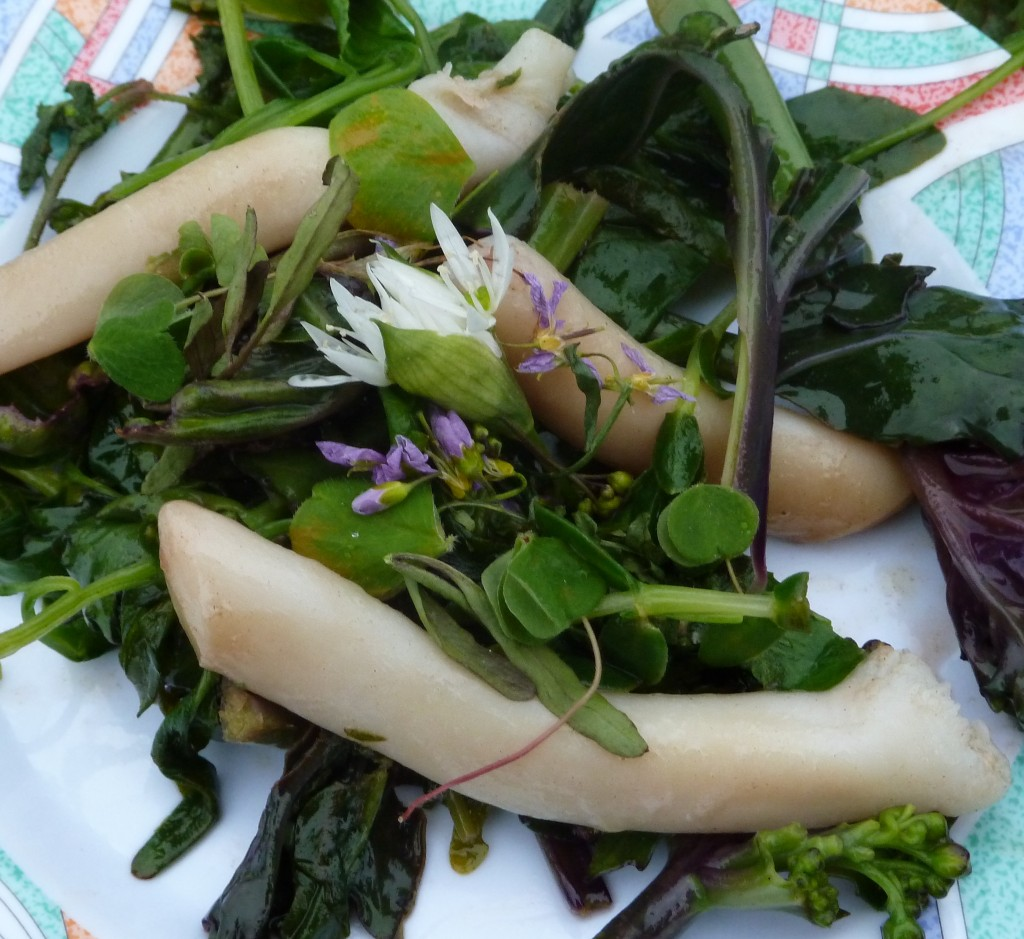 Raw spoot with ramsons and spring herbs