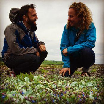Meeting oyster plant on honeymoon