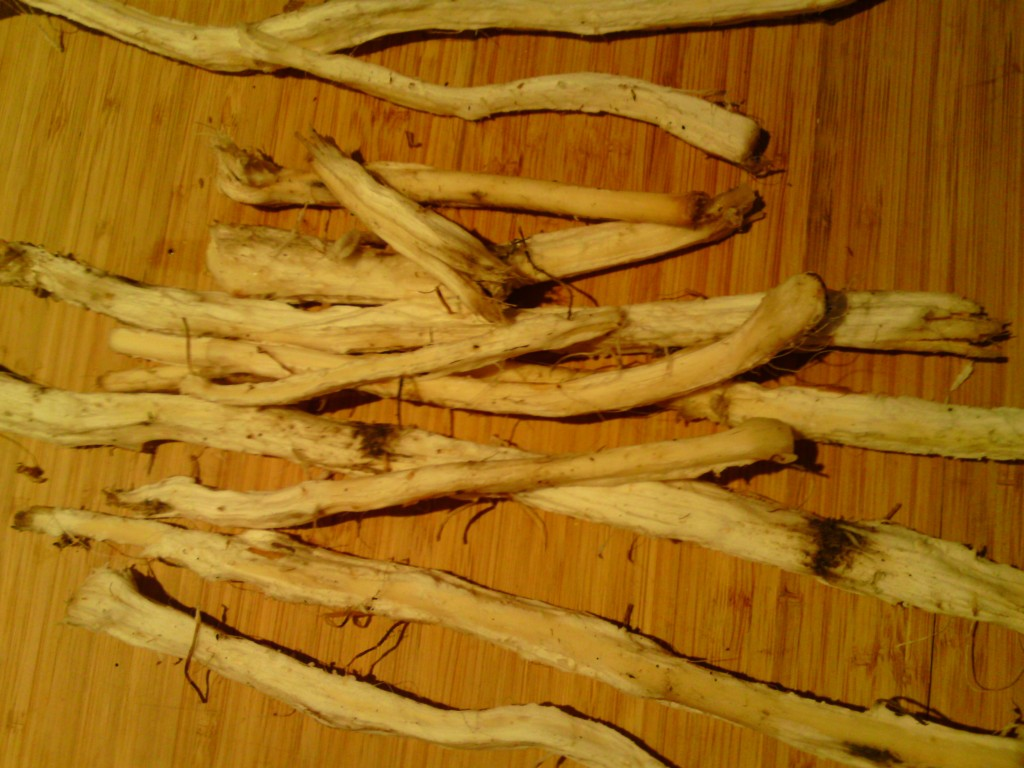 Wash and peeled reedmace rhizomes