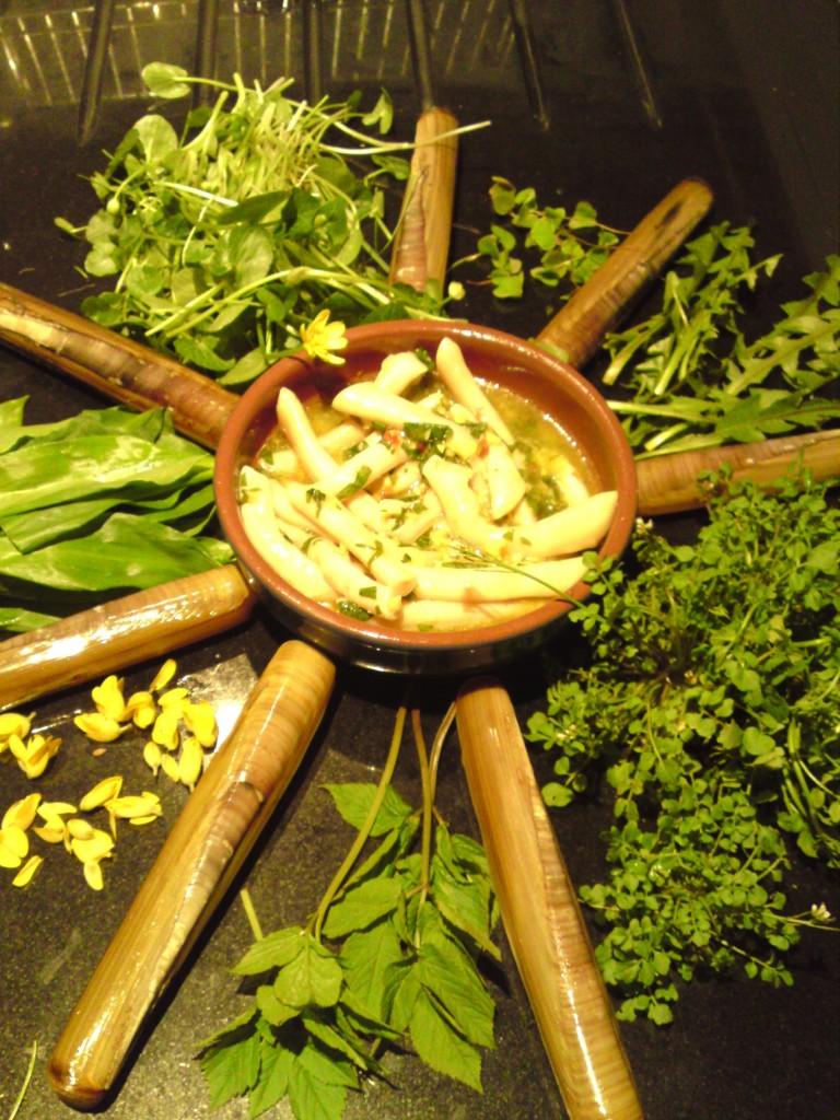 wild salad+spoots 1
