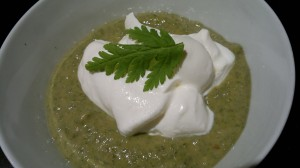 Japanese knotweed and sweet cicely compote with greek yogurt.
