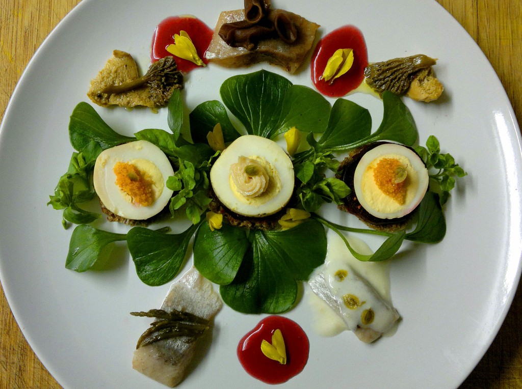 Herring pickled 3 ways with pink purslane, beetroot, pumpernickel, smoked egg, creamed roe, preserved chanterelles, hedgehog fungi & jelly ear, sweet elderberry vinegar and broom flowers.