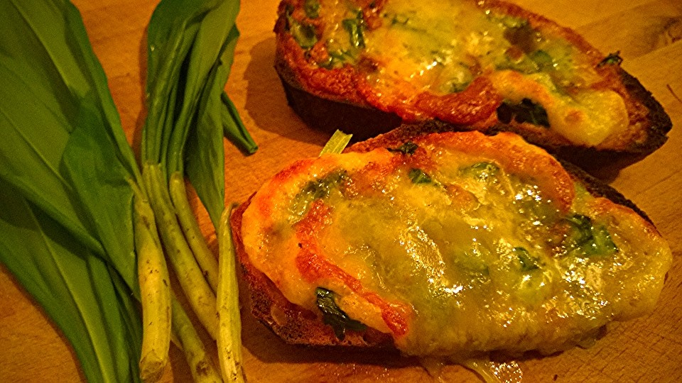 Cheese, fermented & fresh wild garlic on toast