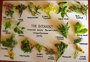 19 of The Botanist's 22 foraged Islay botanicals
