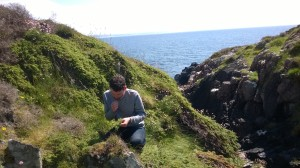 Foraged mixology guru Danny Whelan of Hawthorn Drinks meets his first wild juniper on Islay cliffs