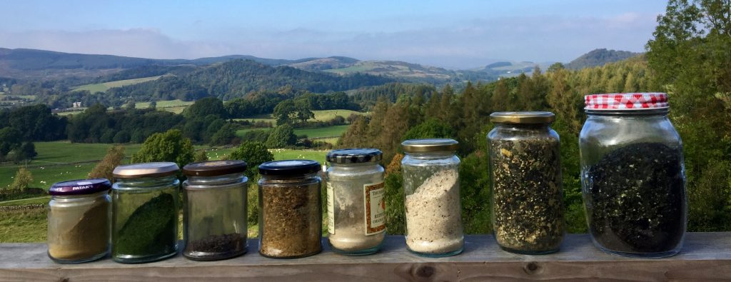 The Wild Spice Rack - the flavours of our landscape
