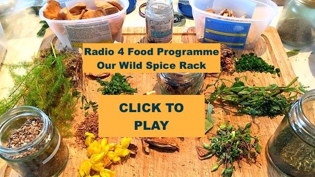 spice-radio-pic